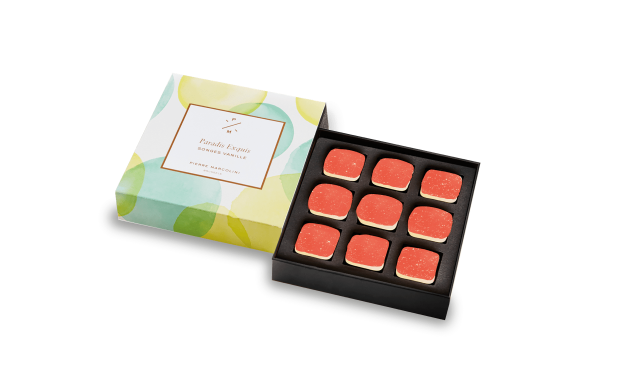 Box of 9 Vanilla Songes Pierre Marcolini